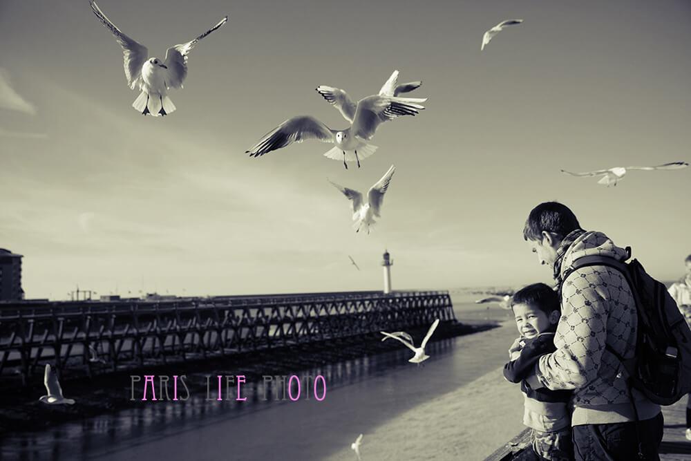 海鳥に餌をあげるパパと男の子