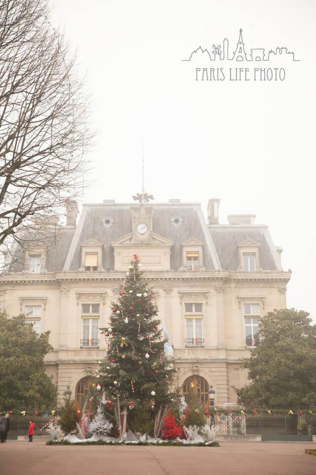 クリスマスツリーと市役所
